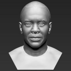 1.jpg Télécharger fichier STL Le Dr Dre a mis fin à l'impression en 3D de formats stl obj prêts • Plan à imprimer en 3D, PrintedReality