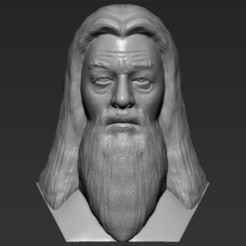 Download 3D printer files Dumbledore from Harry Potter bust 3D printing ready stl obj, PrintedReality