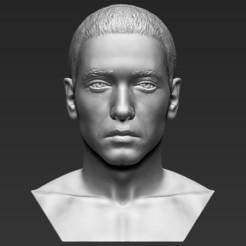 1.jpg Télécharger fichier STL Le buste d'Eminem est prêt pour l'impression 3D des formats stl obj • Plan pour impression 3D, PrintedReality