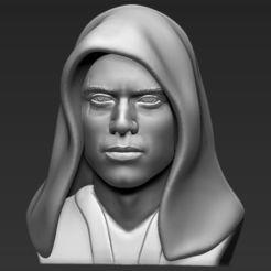 Modelos 3D Anakin Skywalker Star Wars busto 3D impresión stl listo objeto, PrintedReality