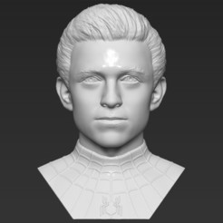 1.jpg Download STL file Spider-Man Tom Holland bust 3D printing ready stl obj formats • 3D printable template, PrintedReality