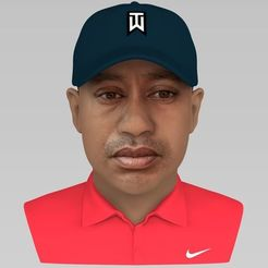 3D print model Tiger Woods bust ready for full color 3D printing, PrintedReality