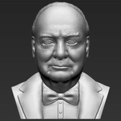 Imprimir en 3D Winston Churchill busto 3D impresión stl listo objeto, PrintedReality
