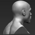 Archivos 3D Busto Floyd Mayweather listo para la impresión en 3D a todo color, PrintedReality