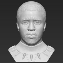 1.jpg Download STL file Chad Boseman Black Panther bust 3D printing ready stl obj formats • 3D printing design, PrintedReality