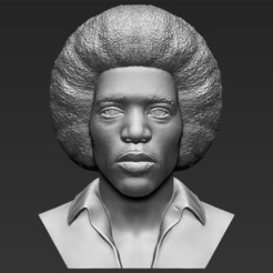 Download 3D printer files Jimi Hendrix bust 3D printing ready stl obj, PrintedReality