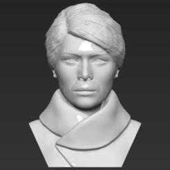 Descargar STL Melania Trump busto 3D listo para imprimir stl obj, PrintedReality