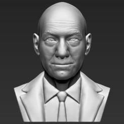 Descargar diseños 3D Profesor X Charles Xavier busto 3D impresión listo objeto stl, PrintedReality