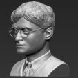 Télécharger fichier 3D Buste Harry Potter prêt pour l'impression 3D couleur, PrintedReality