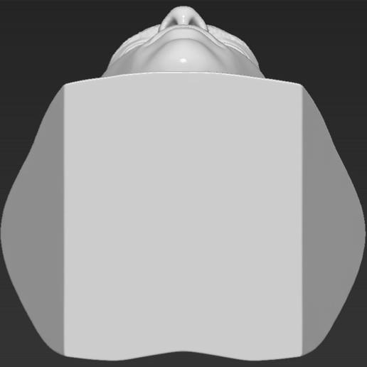 23.jpg Download STL file Ronaldo Nazario Brazil bust 3D printing ready stl obj formats • Template to 3D print, PrintedReality