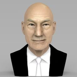 STL Professor X Charles Xavier bust ready for full color 3D printing, PrintedReality