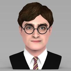 Descargar modelos 3D para imprimir Busto de Harry Potter listo para la impresión 3D a todo color, PrintedReality