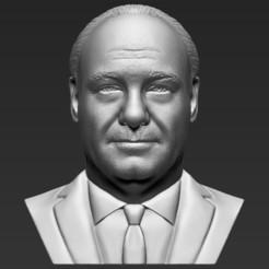 Descargar STL Tony Soprano rompió la impresión en 3D en formatos stl obj listos para ser impresos., PrintedReality