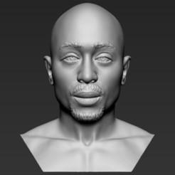 Descargar archivo 3D Tupac Shakur busto 3D listo para la impresión stl formatos objeto, PrintedReality