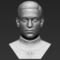 1.jpg Download STL file Spider-Man Tobey Maguire bust 3D printing ready stl obj formats • 3D printing template, PrintedReality