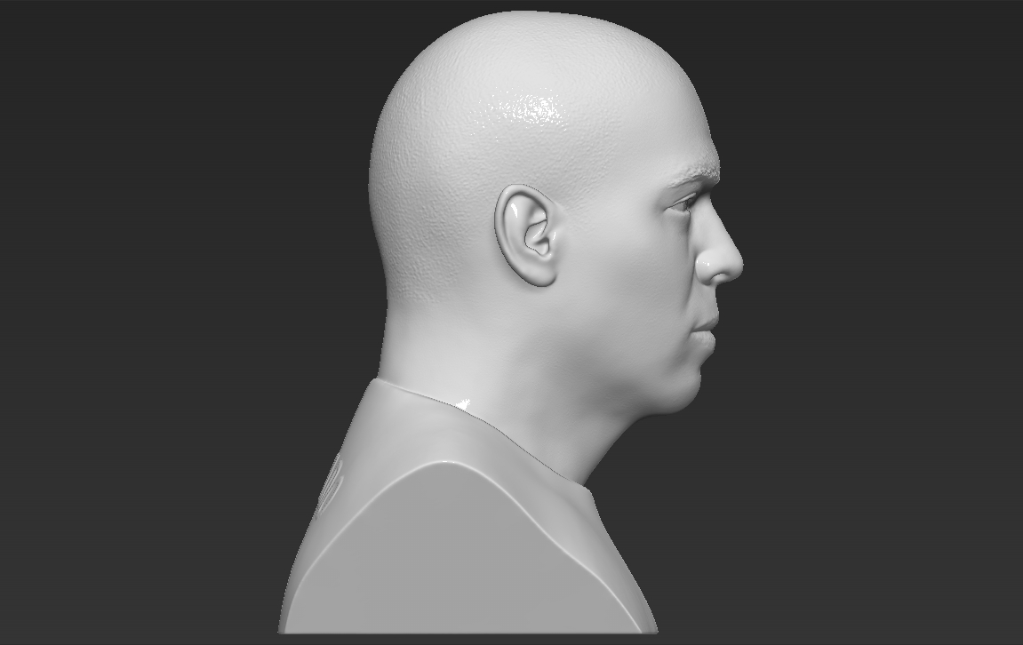 8.jpg Download STL file Ronaldo Nazario Brazil bust 3D printing ready stl obj formats • Template to 3D print, PrintedReality