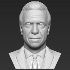 1.jpg Download STL file Andrew Cuomo bust 3D printing ready stl obj formats • 3D printer template, PrintedReality