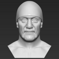 1.jpg Download STL file Hulk Hogan bust 3D printing ready stl obj formats • Model to 3D print, PrintedReality