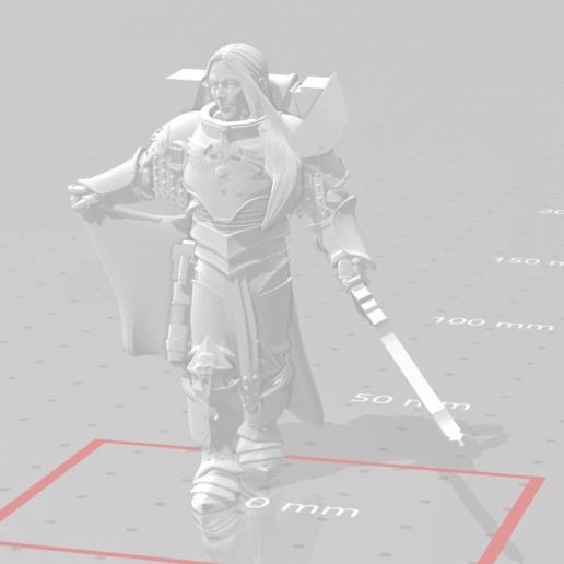 Télécharger fichier OBJ gratuit Fulgrim : Phoenix Remix • Modèle pour impression 3D, SchrodyCosp