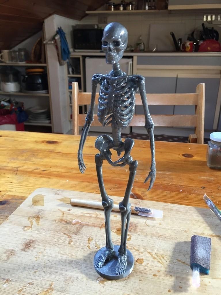 IMG_0596_display_large.jpg Télécharger fichier STL gratuit Squelette humain • Objet imprimable en 3D, Cornbald