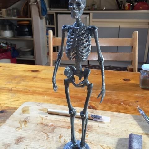 Free 3D print files Human Skeleton, Cornbald