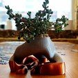 Download free 3D printer files Bonsai Planter, DeskQuirk