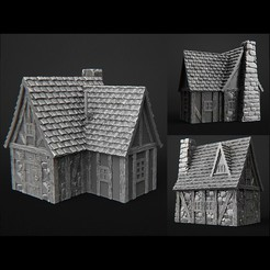 Download 3D printing designs terrain fantasy house, 3DForge