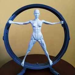 Télécharger fichier 3D Vitruvian Host (Westworld), i0S
