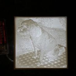 Download free 3D printer designs Lithophane Lampe, 3ddrucktom