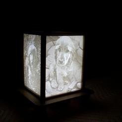 Imprimir en 3D gratis Lámpara de Lithophane, 3ddrucktom