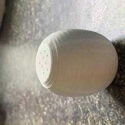 IMG_1667.jpg Download free STL file salt shaker • 3D printer design, scouterlukeshapiro
