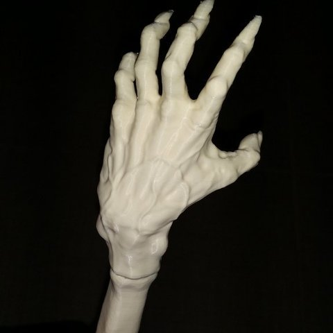 Free 3D model Backscratcher, shuranikishin