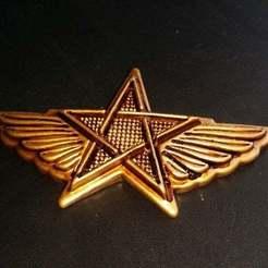Download free 3D model Star & wings, shuranikishin