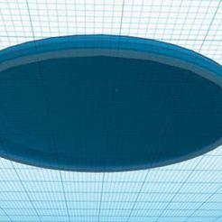 Captudrar.JPG Download free STL file Frisbee • Model to 3D print, nekorodrigues