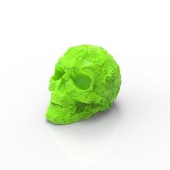 Télécharger fichier imprimante 3D gratuit Crâne avec des dessins, CastleDesignChile