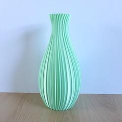 Tall Decoration Vase , PETG, Slimprint 1 .jpeg Download STL file Tall Decoration Vase, (Vase Mode) • Design to 3D print, Slimprint