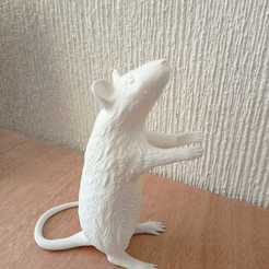 WhatsApp Image 2020-10-05 at 3.46.05 PM.jpeg Download STL file Seletti - Rat lamp - Lampara de rata  • Model to 3D print, bombillaf