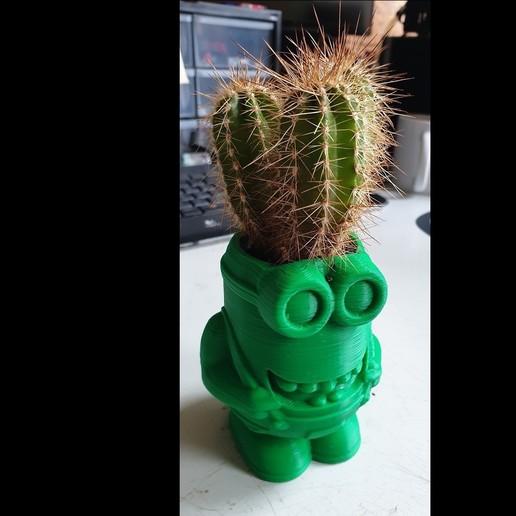 20190620_0927232.jpg Download free STL file Minion Flower Pot • 3D printing template, helmuteder