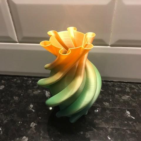 IMG_4884.jpg Download STL file Helta Skelta vase • 3D printer model, Brithawkes