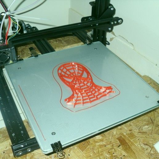 SDC10008.JPG Télécharger fichier STL tête d'araignée • Plan pour impression 3D, liggett1