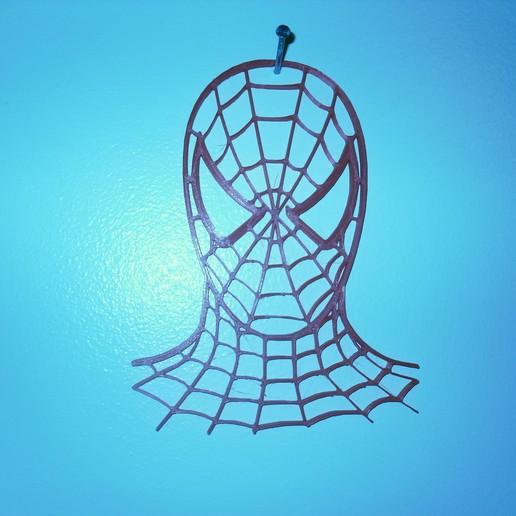 SDC10009.JPG Télécharger fichier STL tête d'araignée • Plan pour impression 3D, liggett1