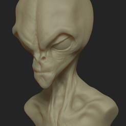 Descargar modelos 3D Busto ET, barretomueller