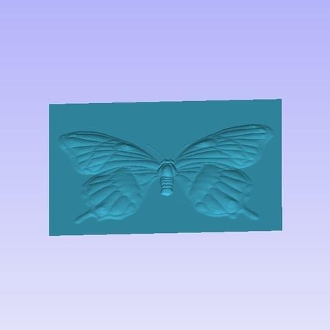 Butter1.jpg Télécharger fichier STL gratuit Papillon • Objet à imprimer en 3D, Account-Closed