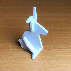IMG_0729.jpeg Download free STL file Lapin • 3D print model, remikoutch