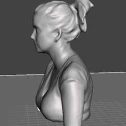 2020-10-16_234315.png Download OBJ file female bust with ponytail • Model to 3D print, agozalin
