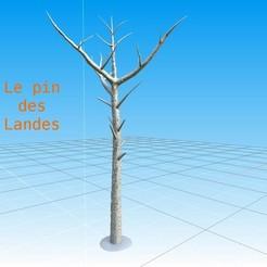 Télécharger fichier STL Pack de 2 Pins des landes • Design à imprimer en 3D, LaForge3D