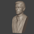 2.png Download 3MF file Alain Delon • 3D print object, DK7