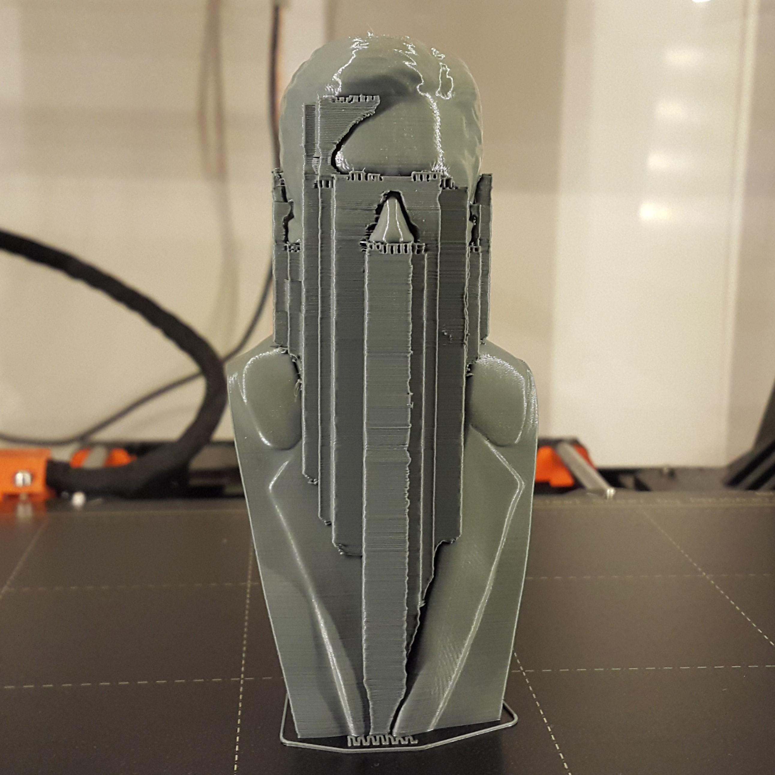 Print.jpg Download 3MF file Alain Delon • 3D print object, DK7