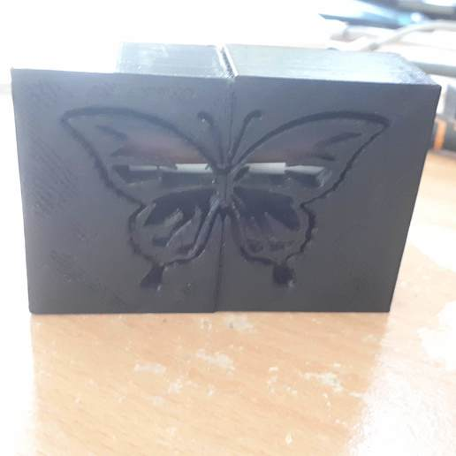 Download free 3D model protection box Butterfly battery protection