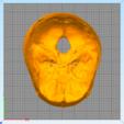 skull3.PNG Télécharger fichier STL gratuit Crâne • Objet pour imprimante 3D, Hardesigner